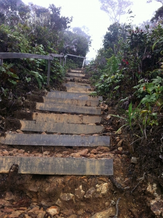 steep: Steep  Stock Photo