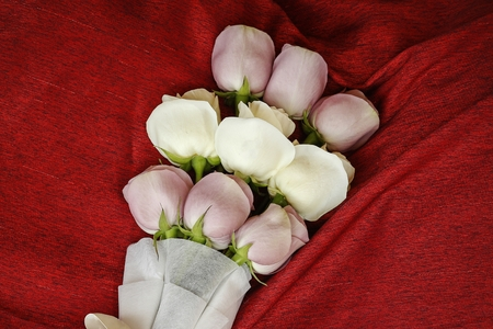 bouquet white and pink rose