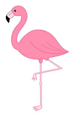 Flamingo bird illustration. Isolated on white background Ilustracje wektorowe