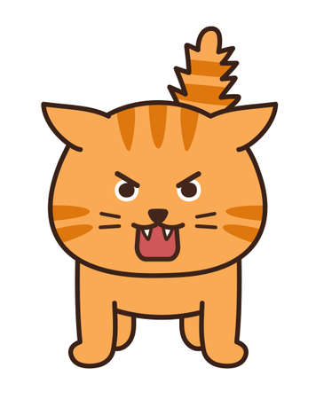 Angry cat stuck its tail up. Vector illustration isolated on white background.