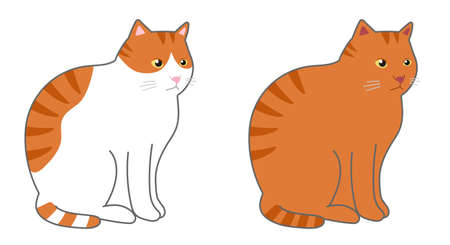 Tabby cat and orange tabby and white cat in a sitting. Vector illustration isolated on white background. Illusztráció