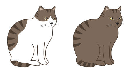 Brown tabby cat and brown tabby and white cat in a sitting. Vector illustration isolated on white background. Illusztráció