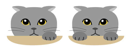 Gray cat secretly watching over from afar. Vector illustration isolated on white background.