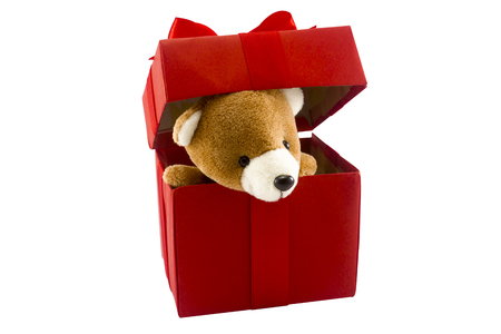 cute teddy bear in red gift box isolated on white background with clipping path,too give someone important in valentine's day