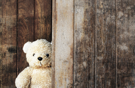 Cute teddy bear on wooden background with copy space.
