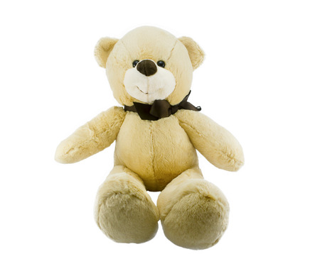 cute teddy bear isolated on white background with clipping path.