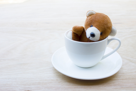 teddy bear in white cup coffee on wood table on background with copy space.