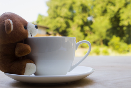 teddy bear and white cup coffee on wood table on natrue bokeh background with copy space.