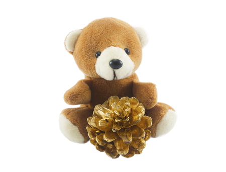 cute teddy bear with gold pine cone isolated on white background.