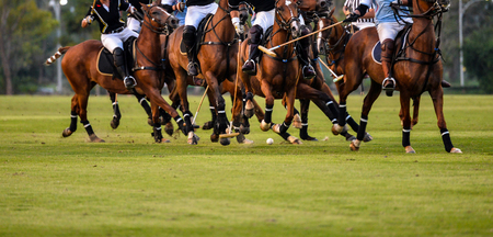Soft focus motion of Polo player during Polo match. 免版税图像