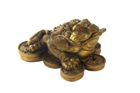 Money Frog - Feng Shui Item for Business Wealth Isolated photo