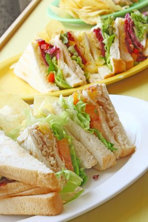 Group of Cut Toasted Sandwiches on a White Plate Stock Photo - 3630917
