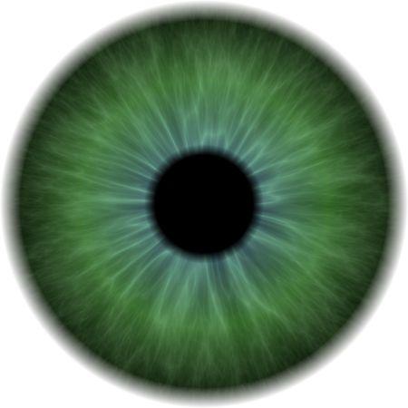 Eyeball Clip Art aisladas sobre fondo blanco Foto de archivo
