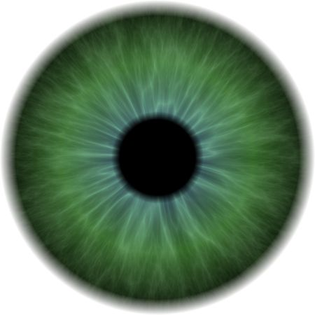 iris: Eyeball Clip Art Isolated on a White Background Stock Photo
