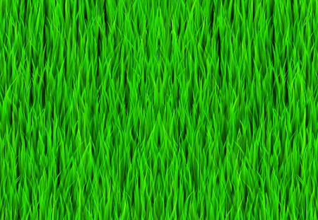complete: Green Grass Patch Abstract Background Pattern Texture