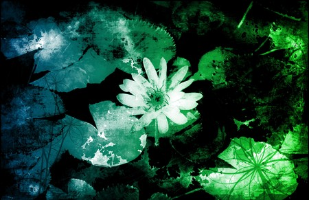 A Grunge Floral Decor Old Texture Background Stock Photo - 4478162