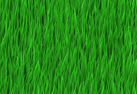 Green Grass Patch Abstract Background Pattern Texture photo