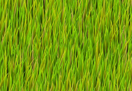 Green Grass Patch Abstract Background Pattern Texture Stock Photo - 5231782