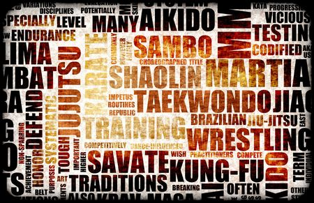 sambo: Martial Arts Different Forms of Fighting