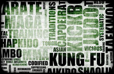 disciplines: Kung Fu Martial Arts als Fighting Style