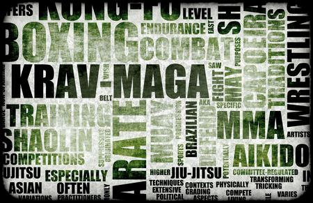 krav maga: Krav Maga Martial Arts as a Fighting Style