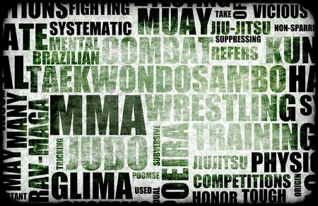 disciplines: Mixed Martial Arts MMA als Fighting Style