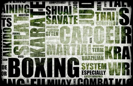 disciplined: Boxing Martial Arts as a Fighting Style