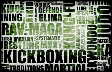 Kickboxing Martial Arts as a Fighting Style photo