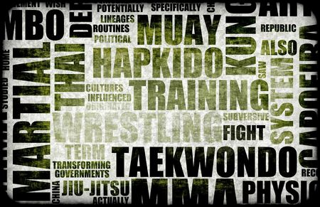 tae: Tae Kwon Do Martial Arts as a Fighting Style