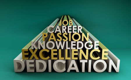 skillset: Business Skills for a Job Career in 3d