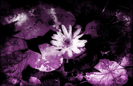 A Grunge Floral Decor Old Texture Background Stock Photo - 6119836