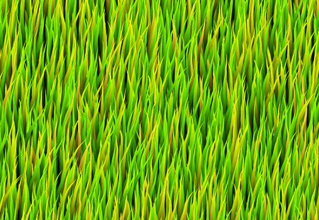 Green Grass Patch Abstract Background Pattern Texture Stock Photo - 6233356