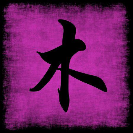 Wood Chinese Calligraphy Five Elements Grunge Set Stock Photo - 6247951