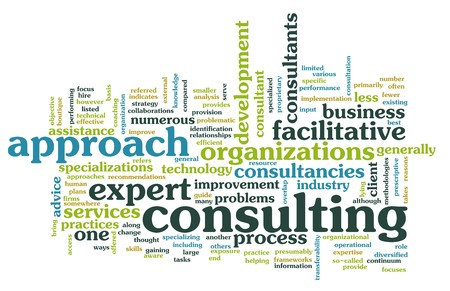 consultant: Management Consulting Service in a Company as Art