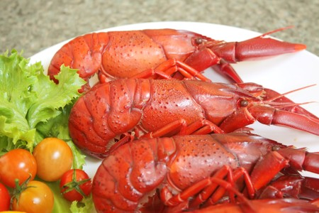 Crayfish Seafood Cooked Dish on White Plate photo