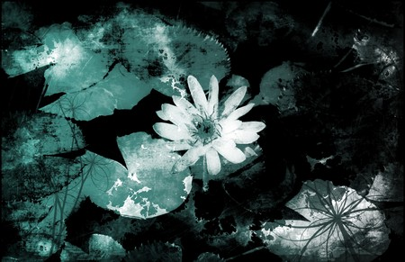 A Grunge Floral Decor Old Texture Background Stock Photo - 7098216
