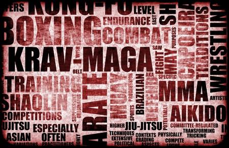 disciplines: Krav Maga vechtsporten als een stijl van vechten