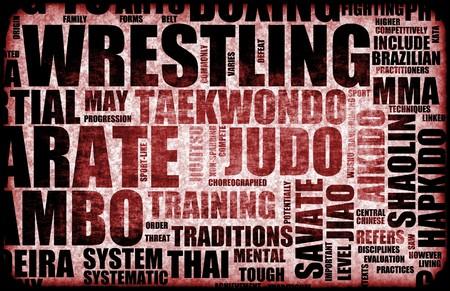 disciplines: Worstelen vechtsporten als een vechtstijl Stockfoto