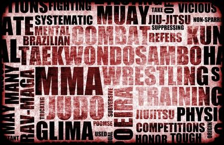 mixed martial arts: Artes marciales mixtas MMA como un estilo de lucha contra