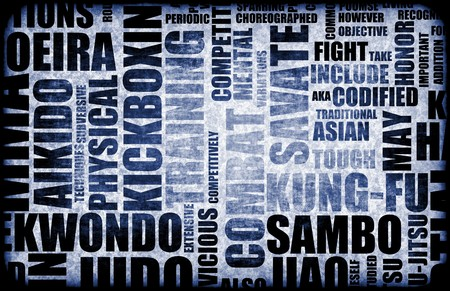 disciplined: Sambo Martial Arts as a Fighting Style Stock Photo