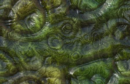 Sans soudure Alien Skin Texture de Reptile Monster
