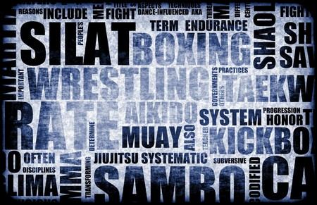 disciplines: Silat Martial Arts als stijl Fighting