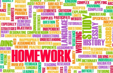 learning by doing: Homework From School as a Study Concept