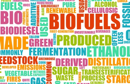 biofuel: Biofuels or Biofuel Clean Energy as a New Concept