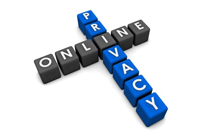 Online Privacy of your Data on the Web Stock Photo - 8983238