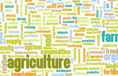농업 분야 예술의 농업 산업 스톡 콘텐츠