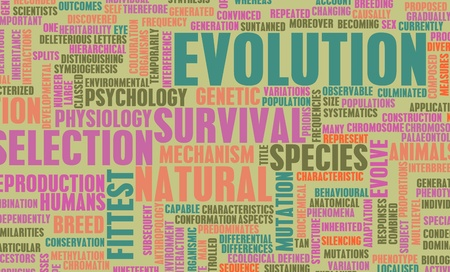 Evolution and Progress of Man as a Concept in 3d Stock Photo - 9148026