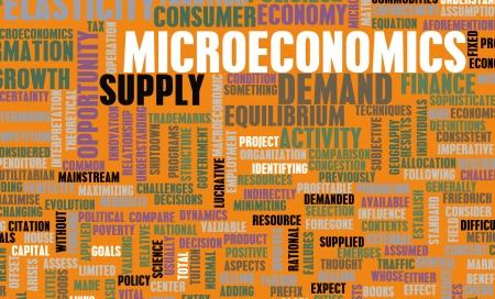 elasticity: Microeconomics or Micro Economics as a Concept