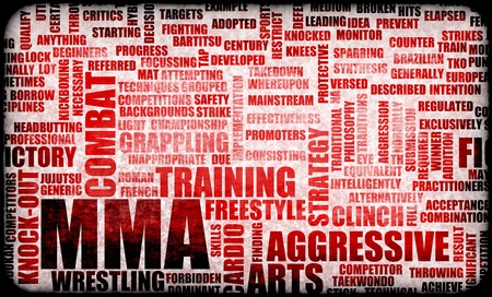 fighting styles: MMA Mixed Martial Arts Fighting System as Sport
