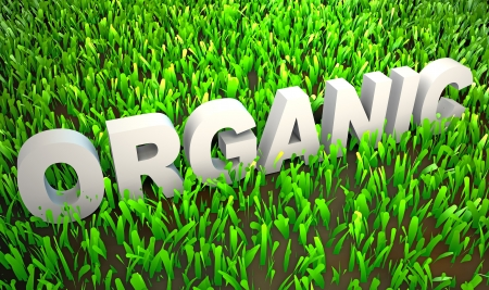 organic concept: Orgranically Grown in Organic Environment as 3d Stock Photo